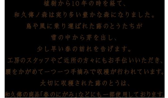 植樹から10年の時を経て、和久傳ノ森は実り多い豊かな森になりました。