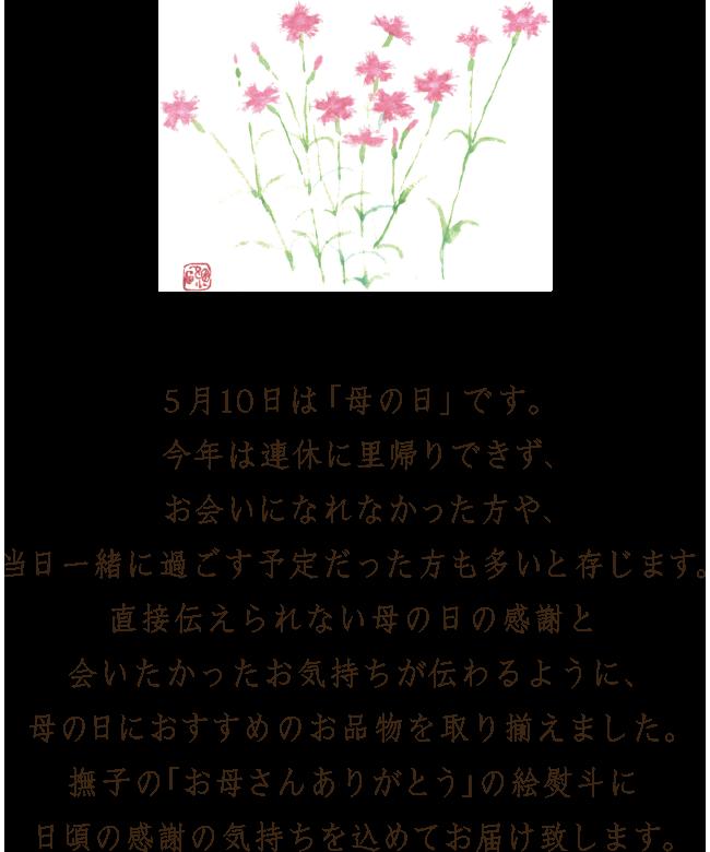 5月10日は「母の日」です。今年は連休に里帰りできず、お会いになれなかった方や、当日一緒に過ごす予定だった方も多いと存じます。直接伝えられない母の日の感謝と会いたかったお気持ちが伝わるように、母の日におすすめのお品物を取り揃えました。撫子の「お母さんありがとう」の絵熨斗に日頃の感謝の気持ちを込めてお届け致します。